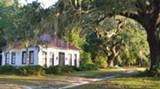 The Palmyra Cottage on Springfield Plantation
