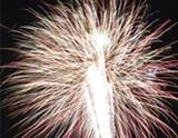 tybee_fireworks_photo_2013.jpg