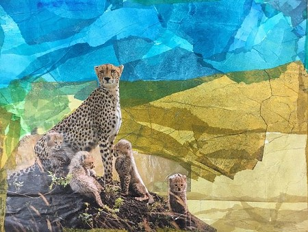 Collage by a 7-year-old student.