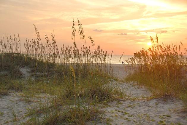 beach-sunrise.jpg