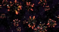 art-beat--loopwave_virus.jpg