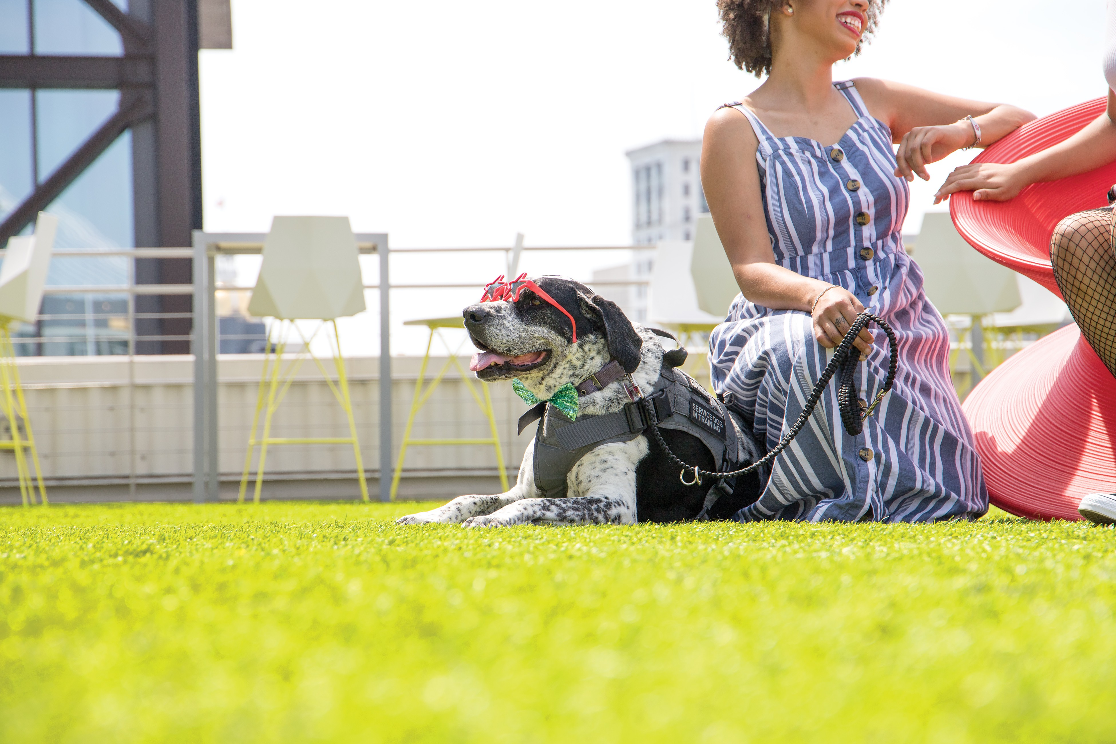 Service dog Bambi sports some stunning shades on the lawn at Electric Moon at Plant Riverside. - PHOTO BY HUNTER MCCUMBER