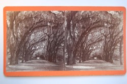 """""""Bonaventure"""" stereograph by O. Pierre Havens, after 1869."""