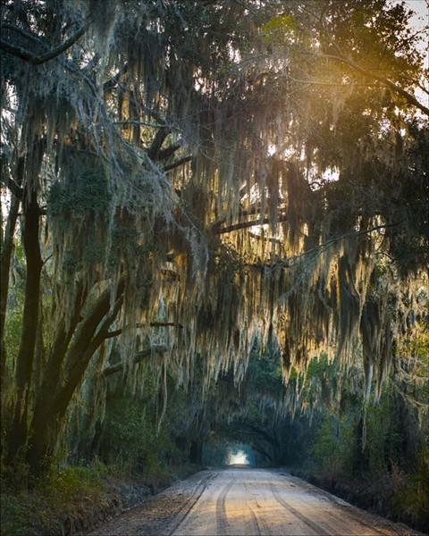 """""""Dorchester Village Road."""" - PHOTO BY GEOFF L. JOHNSON"""
