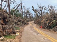 Reflections on Hurricane Michael