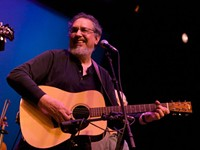 David  Bromberg's American Blues