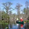 Okefenokee in peril