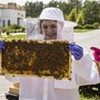 SCAD Back40: A honey of a garden project