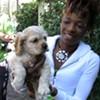Puppies at Paddy's