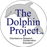 TDP Logo - Uploaded by The Dolphin Project
