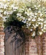 secret_garden_svannah_-_foley.jpg