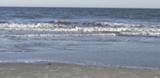 69e45e99_south_beach_walk_image.png
