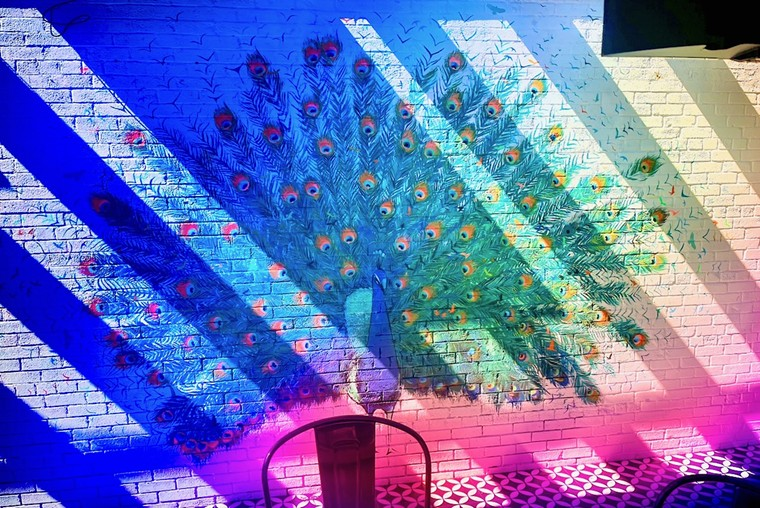 Patio mural; no, there's no peacock on the menu. - ANGIE QUEBEDEAUX
