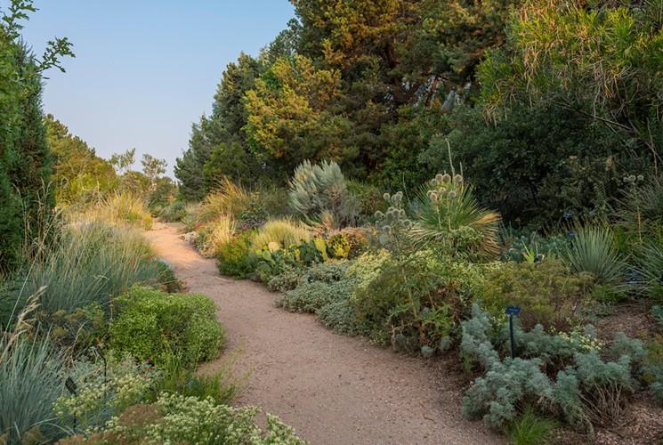 Xeriscaping at the Denver Botanic Gardens. - SCOTT DRESSEL-MARTIN, COURTESY OF DENVER BOTANIC GARDENS