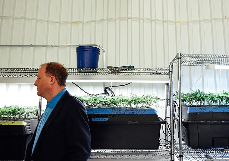 Governor Jared Polis will have to navigate new challenges for Colorado if Congress legalizes cannabis. - KENZIE BRUCE