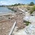 The Beautification of Albany Beach