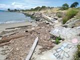NATE SELTENRICH - Albany Beach.
