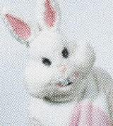 brant_bunny_jpg-magnum.jpg