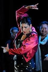bay_area_flamenco.jpg