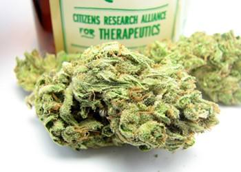 Berkeley Okays Fourth Dispensary, Free Weed