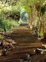 D.H. PARKS/FLICKR(CC) - Berkeley's Northgate Path
