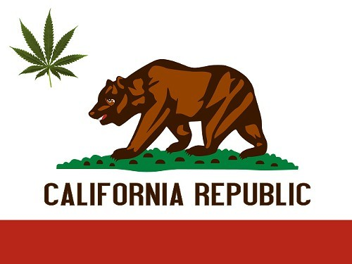 california-state-flag_marijuana.jpeg