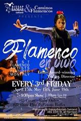 CAMINOS FLAMENCOS - Caminos Flamencos