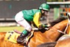 Continued prejudice against female jockeys prevents riders like Stra from getting more mounts.