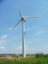 Critics worry that other businesses will want turbines.