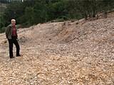 KATHLEEN RICHARDS - Dan Grassetti surveys the damage  in Claremont Canyon.