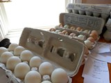 JESSE HIRSCH - Eggs are popular at food swaps.