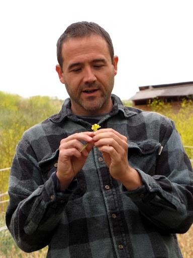 Feinstein, admiring a wild mustard plant.