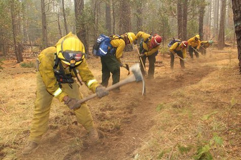 Fire crews construct fireline on the Rim Fire.