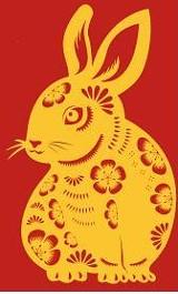 chinese_rabbit.jpg