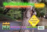REX WINTERBOTTOM - Go Wild! Berkeley flyer
