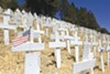 In November 2006, a Lafayette resident began putting up crosses for each US casualty in Iraq.