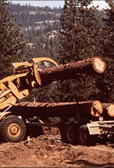National Forests' Fate Is Uncertain