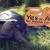 Oakland Zoo Operators Violate Election Laws