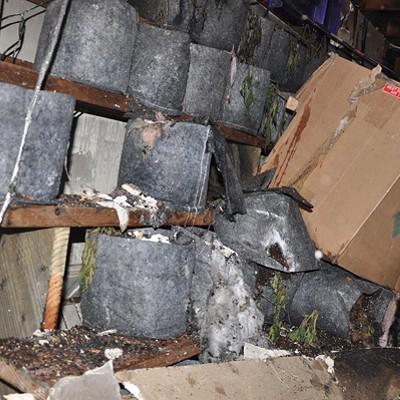 Oakland's Grow House Hazards