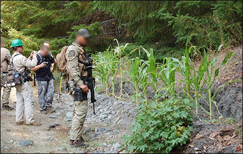 Drug War enforcers are increasingly pointing to the dangers of trespass grows to gain support among environmentalists for the War on Pot.