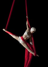 MELISSA BARNES - Rain Anya of The Paper Doll Militia aerial troupe says the circus is an effective social tool.