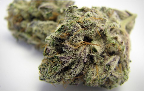 mg_legalize_3425.jpg