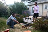 JESSICA LANGLOIS - Rishi Desai and Kachi Okonkwo met through City Dog Share and now watch each other's dogs.