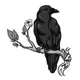 raven_jpg-magnum.jpg
