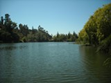JDNX/FLICKR (CC) - See? Not scary! Lake Temescal.