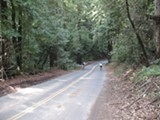 ROBERT GAMMON - The best way to get to Canyon is by bike.