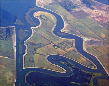 The court ruling could help the fragile delta.