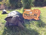 The East Bay Zoological Society illegally posted campaign signs on city property.