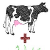 TERRY FURRY - The quadratic equation of East Bay grazing.