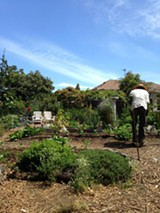 MADELEINE KEY - The Secret Garden is a working farm in addition to an urban oasis.